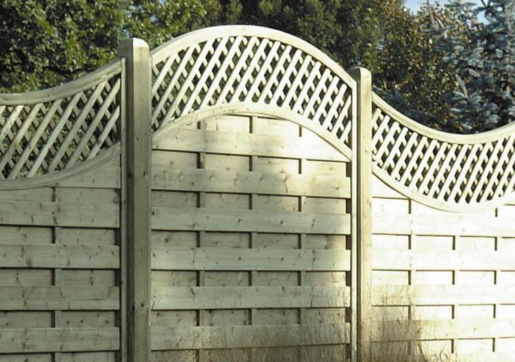 Arched and Concave Lattice Top