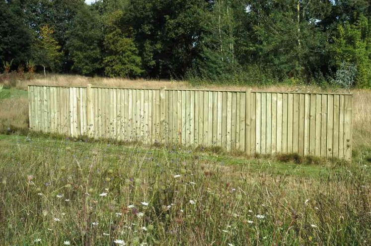 Featheredge Flat Top