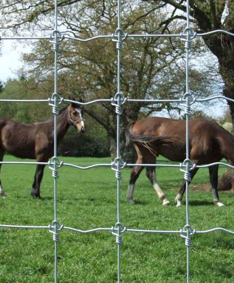 Horse Netting