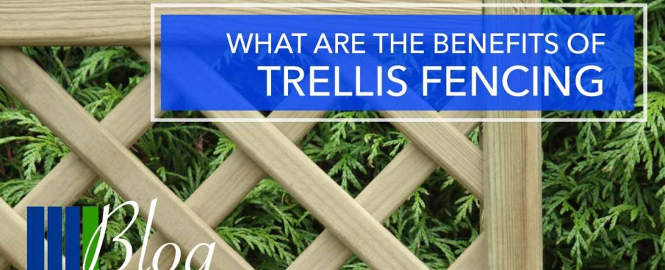 What are the benefits of Trellis Fencing?