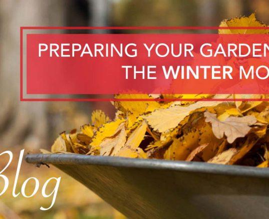 Preparing Your Garden For The Winter Months