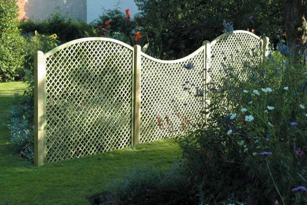 Trellis and Lattice