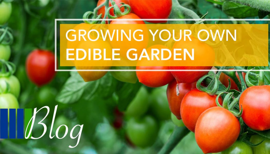 Growing Your Own Edible Garden