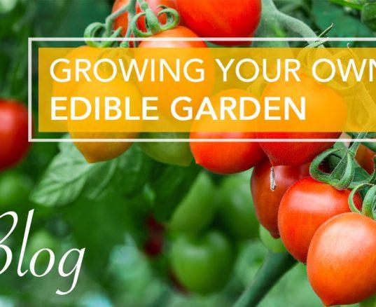 Growing Your Own Edible Garden