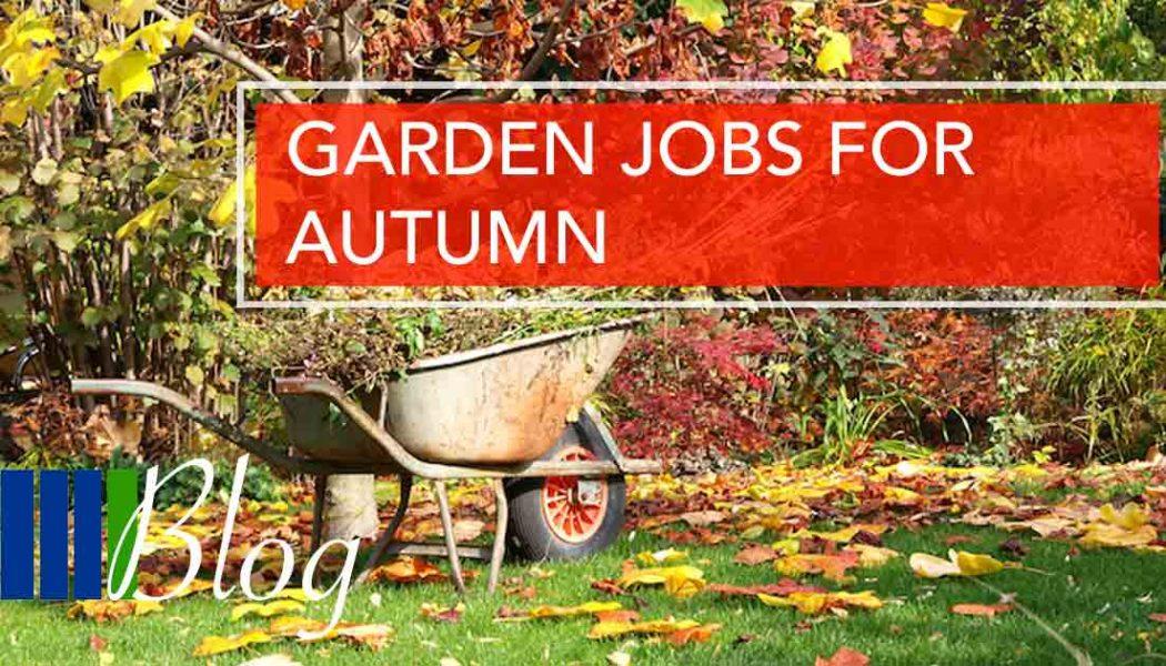 Garden Jobs for Autumn