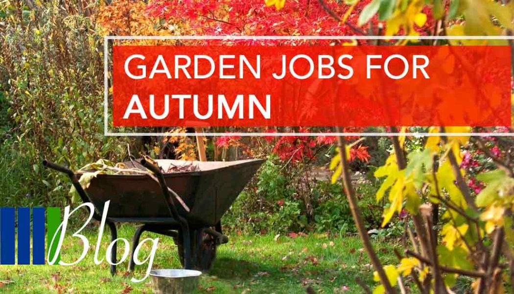 Garden Jobs for Autumn