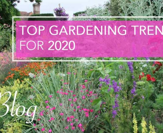 Top Gardening Trends for 2020