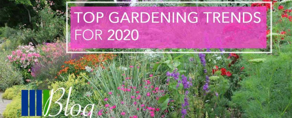 Top Gardening Trends for 2020