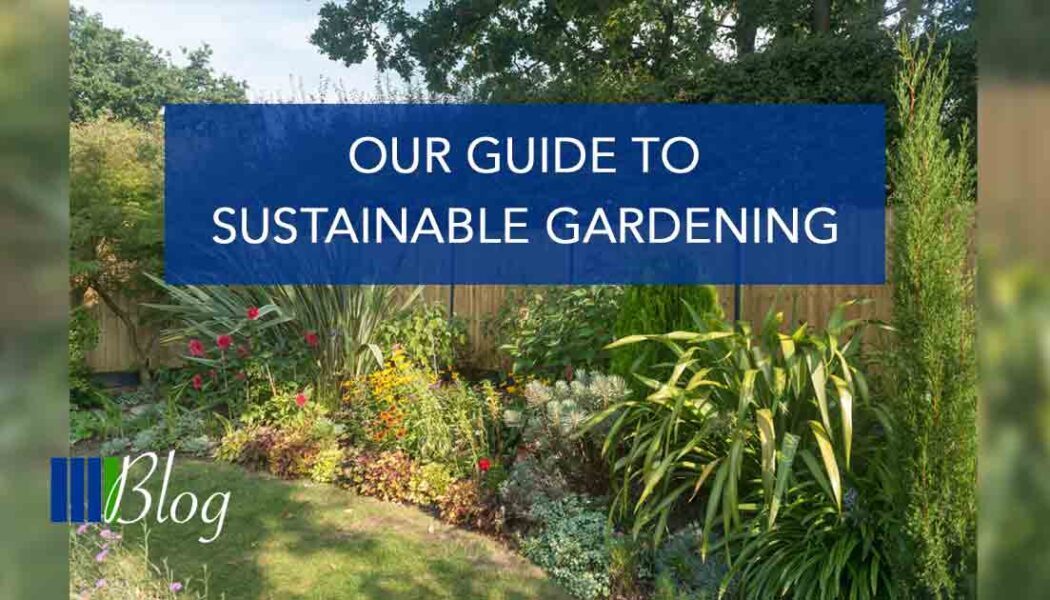 Our guide to sustainable gardening