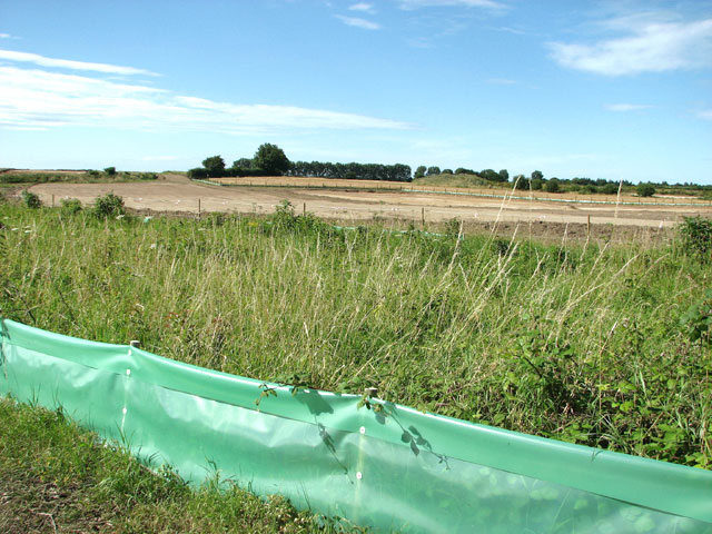 Newt Fencing Installation in Kent